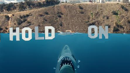 Hollywood Shark